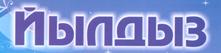 logo yildiz