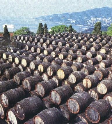 Бочки с вином в Крыму на территории Магарача