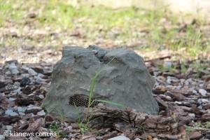 Говорящие камни