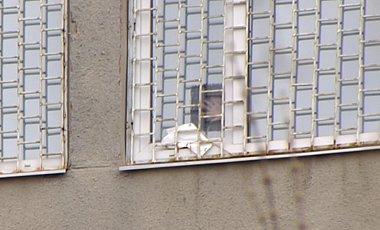 Окно Тимошенко