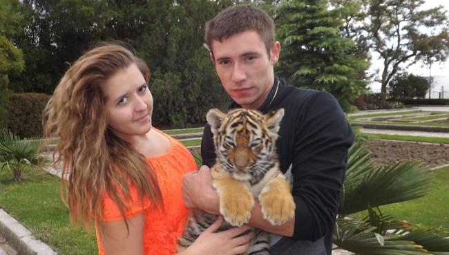 Тигр на прокат